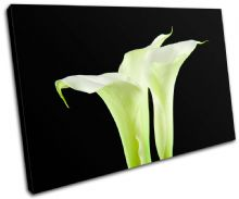 Calla Lily Flowers Floral - 13-1093(00B)-SG32-LO